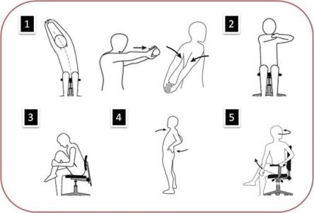 holisticrehabclinic - massage therapy london - WC1X 8NW